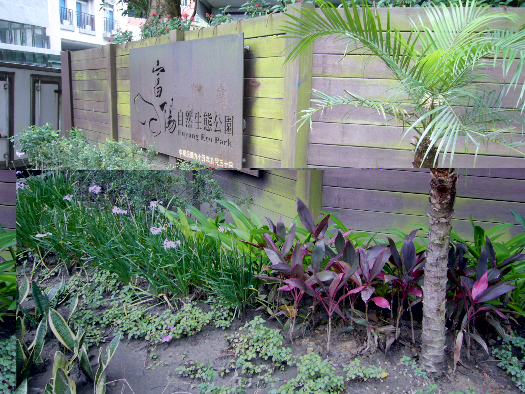 Teaching English and Living in Taiwan Apartments for One Person, a cozy room near NTU ,NTUST image