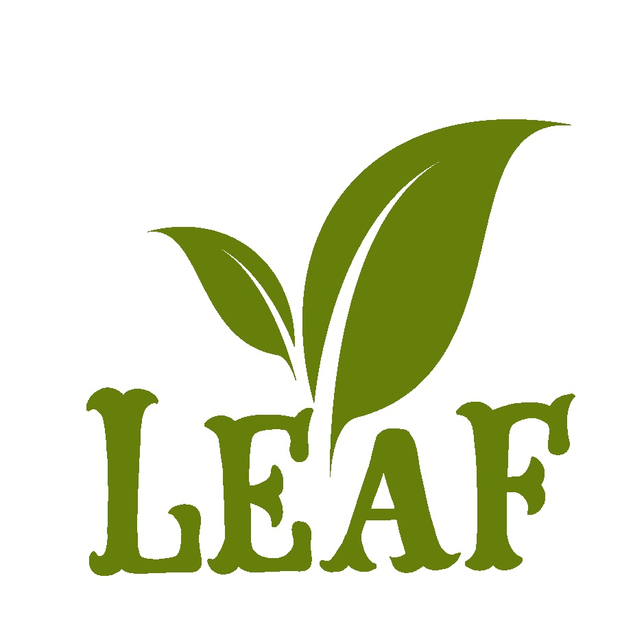 Teaching English and Living in Taiwan Jobs Available 教學工作, Leaf English School Near MRT Station! Native English Teacher Wanted!!! image