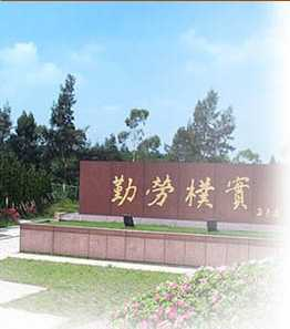 Teaching English and Living in Taiwan, Professional talents in medical science and knowledge management image