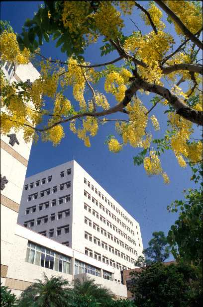 Teaching English and Living in Taiwan, Welcome to Kaohsiung Medical University image